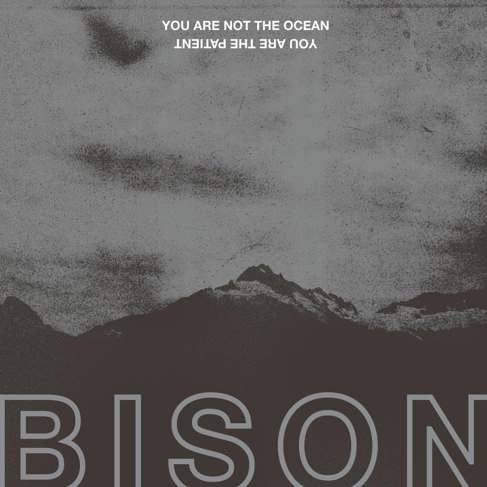 Bison LP