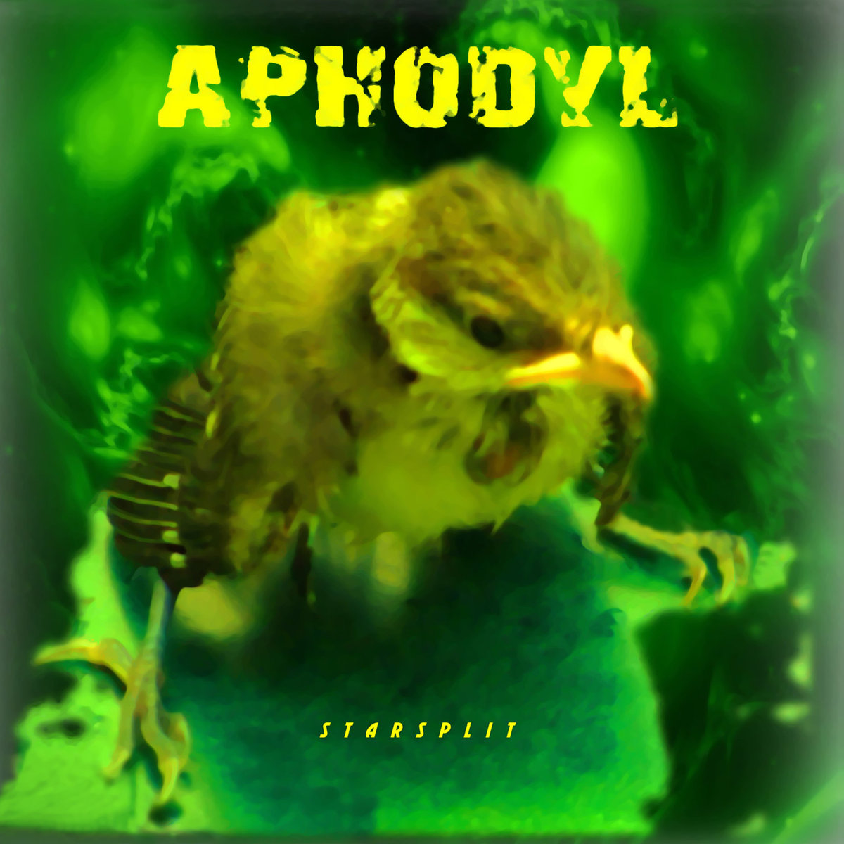 Aphodyl_Album Cover